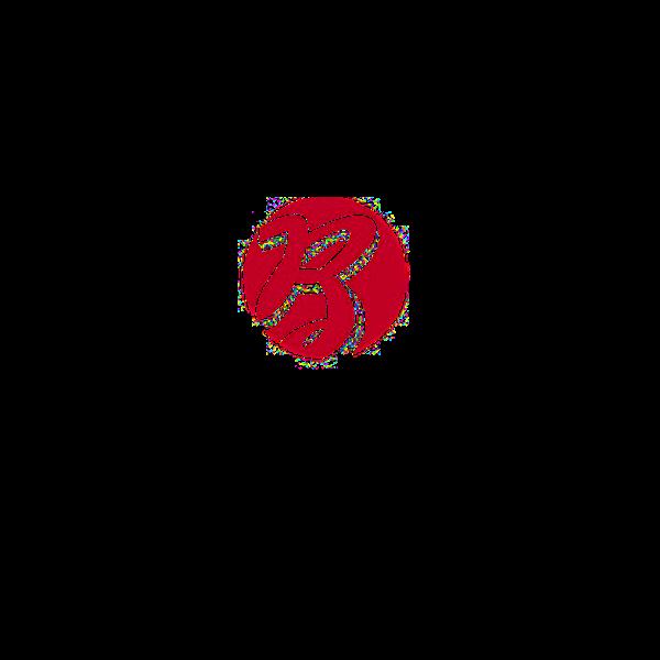 Broich_Logo_600_600