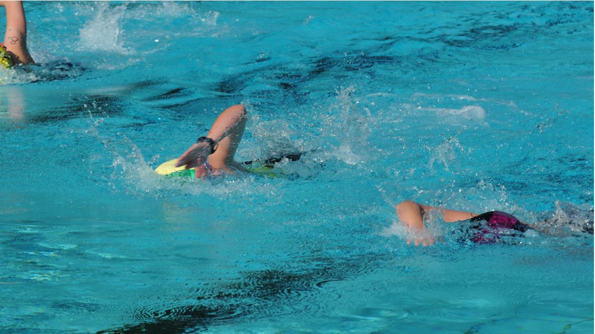 2015 Triathlon Freie Schwimmer 16 9