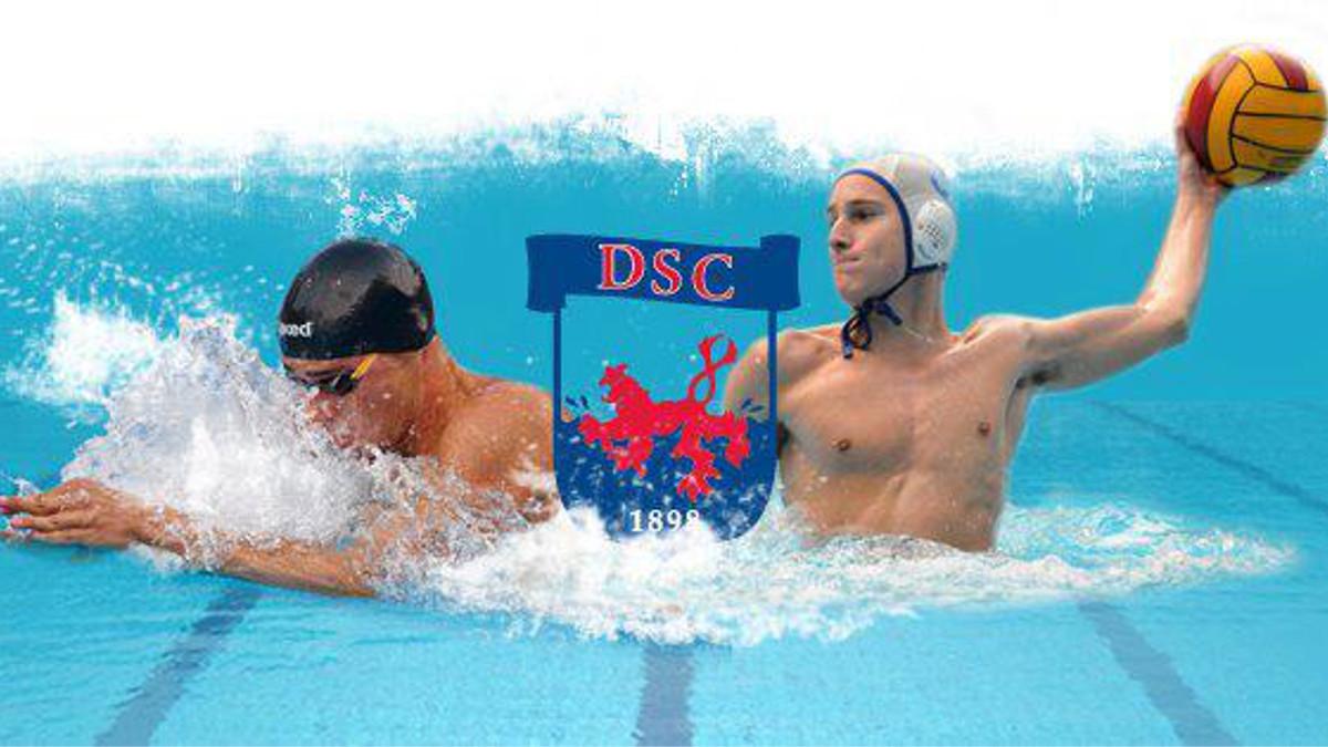 DSC Wasserball Logo